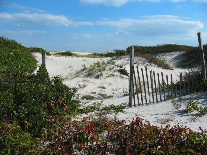 Island Beach State Park, New Jersey