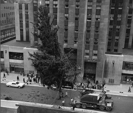 Stawianie świątecznej choinki przy Rockefeller Center, 1961 r.
