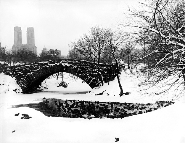 Central Park 1910 r.  Getty Images.